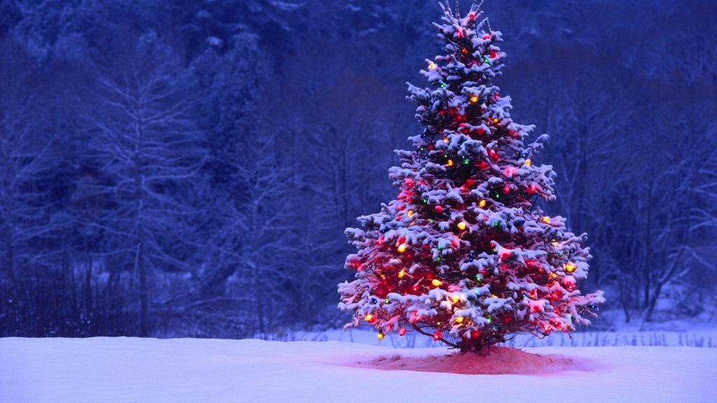 Vacanze Di Natale 167 Milioni Di Italiani In Viaggio Adriaeco